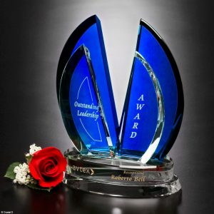 Flight Indigo Award